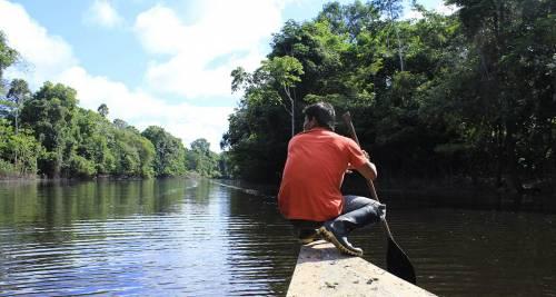 La Foresta Amazzonica, Brasile