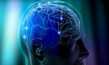 Cosa succede al nostro cervello prima della morte?