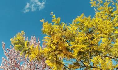 METEO: Weekend per lo più soleggiato, ancora instabile al Nord-Ovest